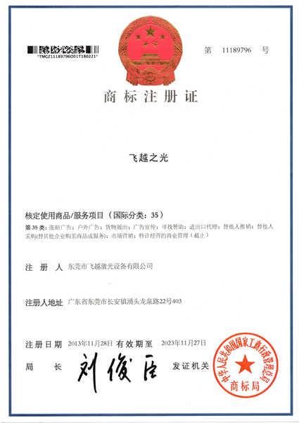 飞越之光商标注册证书(四)