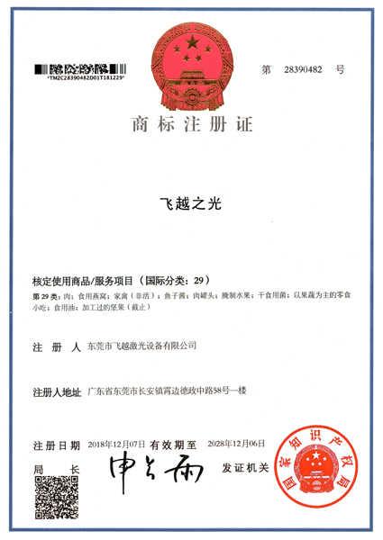 飞越之光商标注册证书(五)
