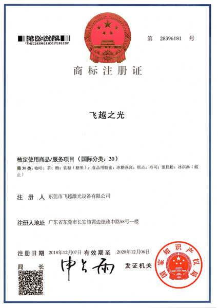 飞越之光商标注册证书(七)