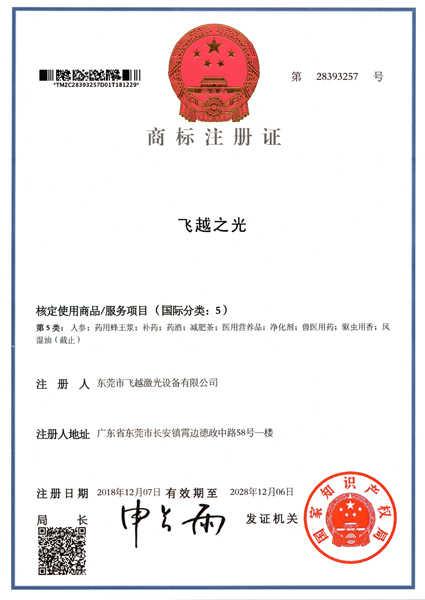 飞越之光商标注册证书(六)