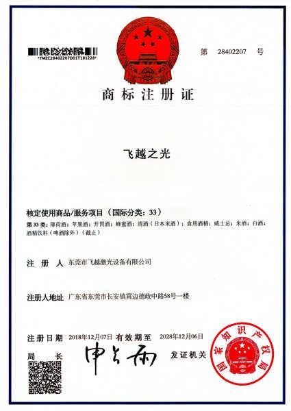 飞越之光商标注册证书(九)