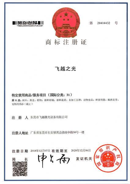 飞越之光商标注册证书(十)